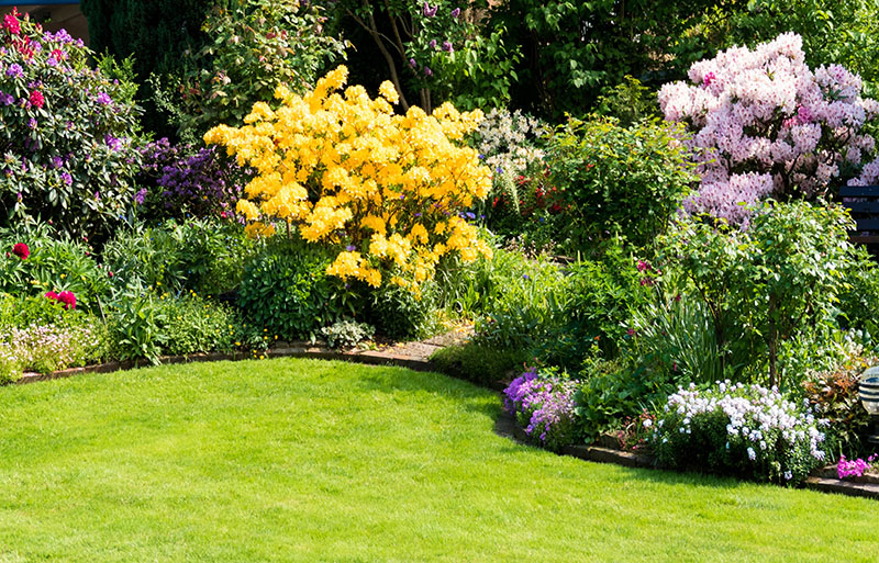 Fruit   Gardening Oprah on tropical garden design, desert garden design, wetland garden design, subtropical garden design, bird friendly garden design, coastal garden design, jungle garden design, tree garden design,
